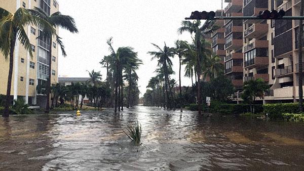 Crandon Enid Key Biscayne Hurricane Irma