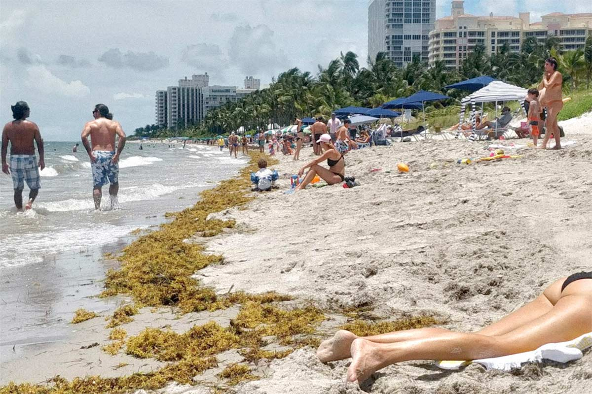 Key Biscayne beach reopens after covid-19 lockdown, June 2020