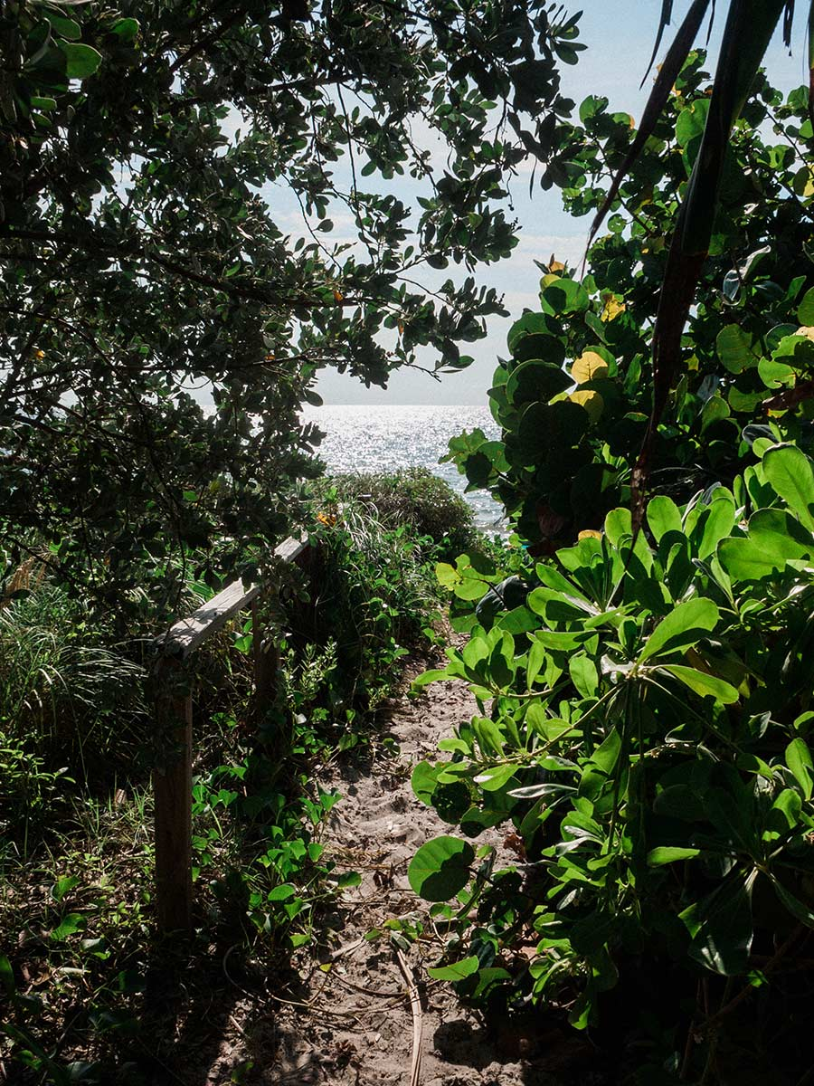 Key Biscayne galen beach path june 2020