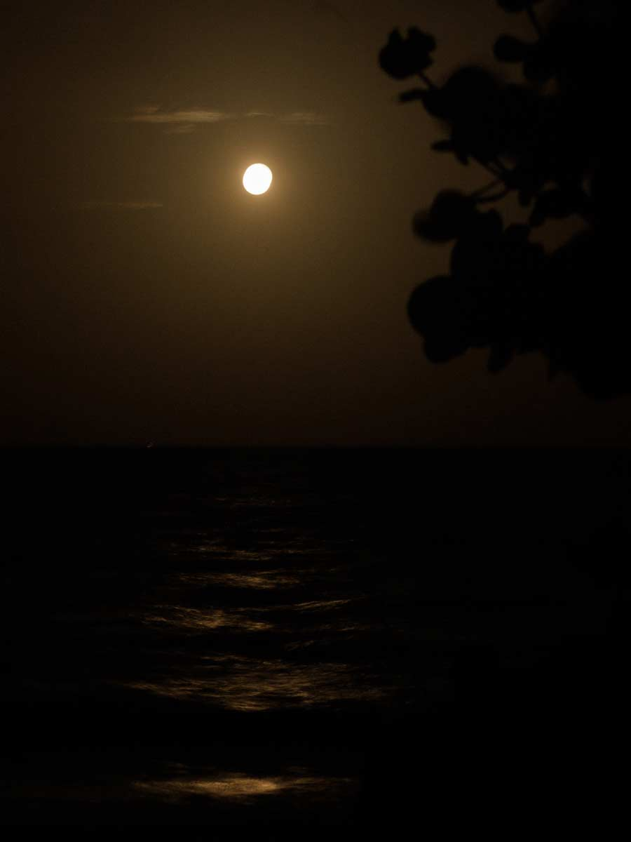 Moon rise in Key Biscayne September 2020