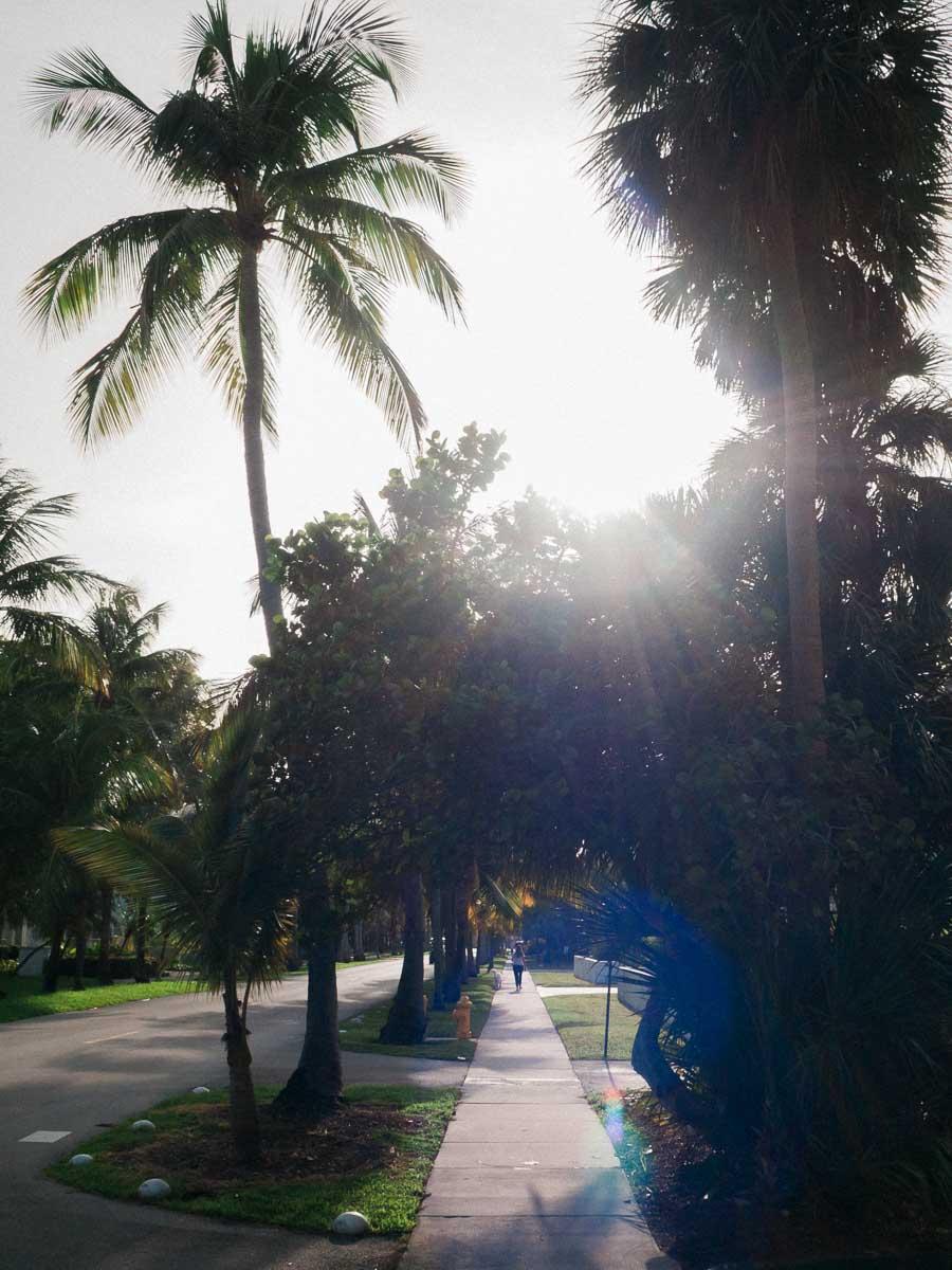 Sunrise drive Key Biscayne