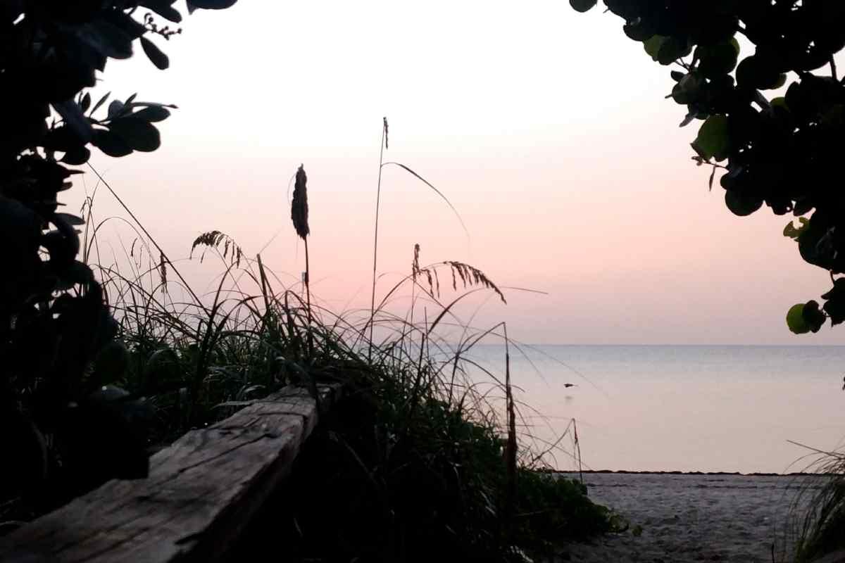 Sunrise Key Biscayne beach august 2021